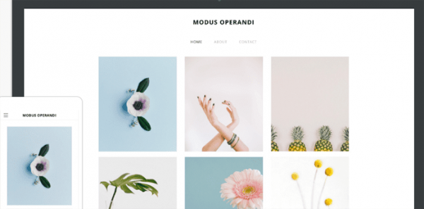 Cento free Weebly theme